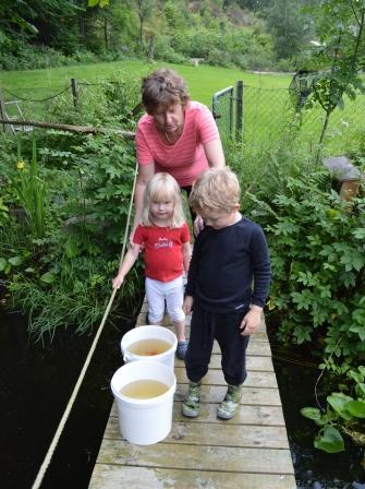 2013-07-03_guldfiskarna snart  på plats
