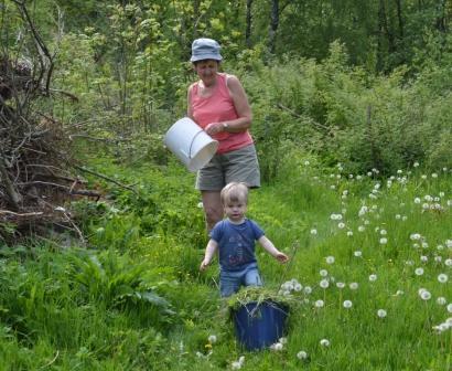 Albin hjälper mormor med ogräs